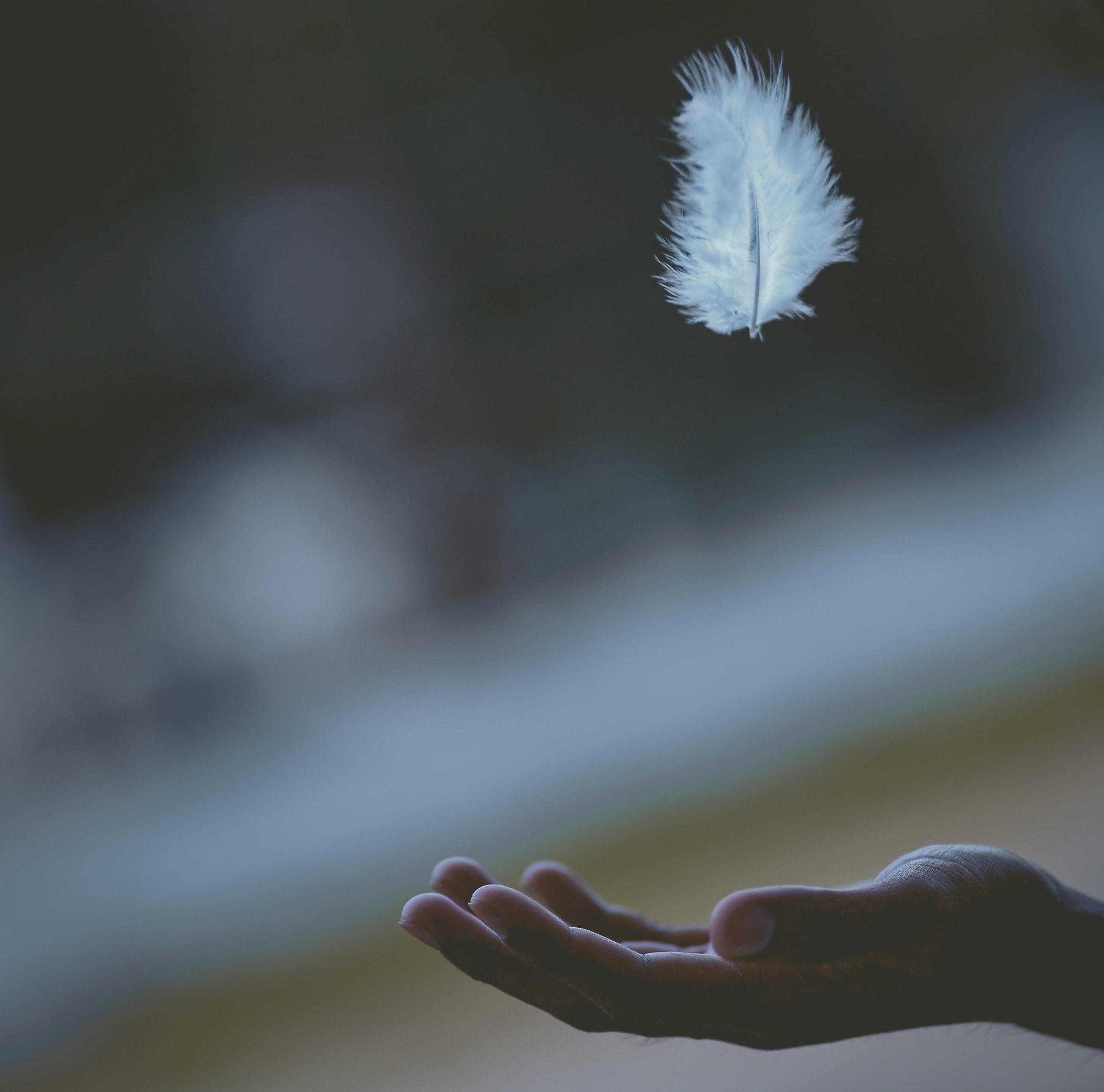 Peříčko na dlani